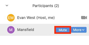 mute-participant.png