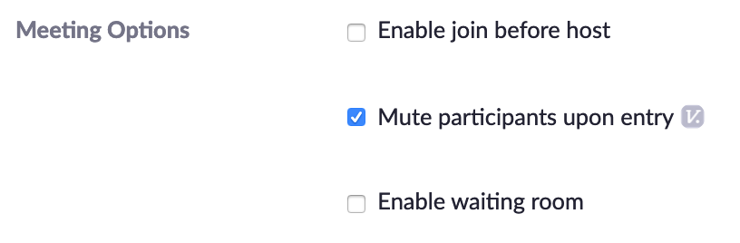 mute-participants-upon-entry.png